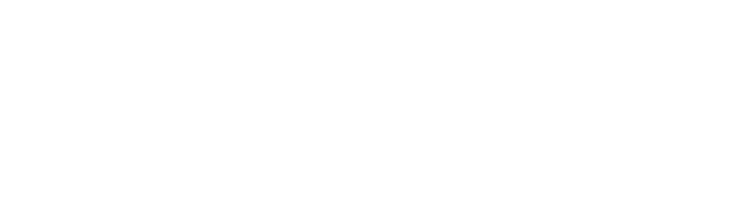Fast Forward Advisors